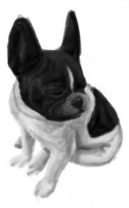 Cute doggy!